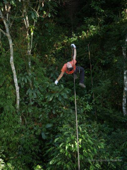 Ziplining to the next platform, The Gibbon Experience, Laos