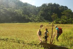 Walking into the jungle for the Gibbon Experience, Laos