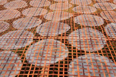 Rice paper drying in Battambang, Cambodia