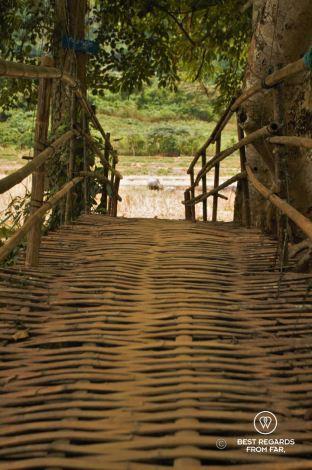 Bamboo bridge, hiking from Muang Ngoy Neua to Ban Hoy Seen, Laos