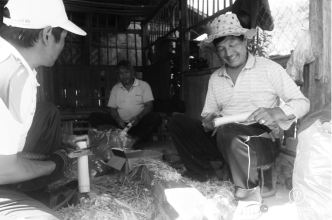 Tea cigar making in Ban Komaen Tea Village, Pongsali, Laos