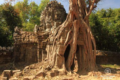 Ta Som, Angkor, Cambodia