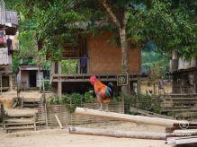 Ban Hoy Seen, Laos
