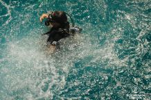 Diving the Surin & Similan Islands, Thailand