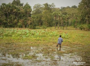 Man fishing in Angkor, Cambodia