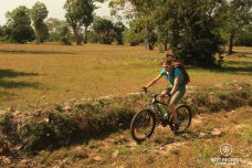Mountain biking in Angkor through rice fields, Angkor, Cambodia