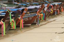 A very few of the hundreds of long-tail boats, Koh Phi Phi, Thailand