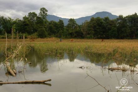 The Swing, Laos