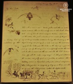 A fantastic flying machine letter by Richard Doyle, the Morgan Library, New York City
