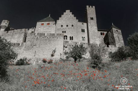 Red poppies and red shades of the medieval city of Carcassonne in France.
