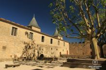 Empty ourtyard of the medieval Carcassonne Castle with a tree, sun, shadow and blue skies.