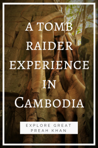 Tomb Raider experience PIN