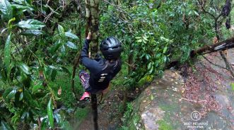Sliding down a tree while canyoning in Sabie by the Blyde River Canyon, South Africa