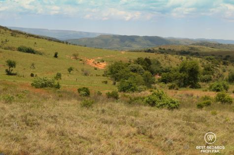Cradle of humankind, South Africa