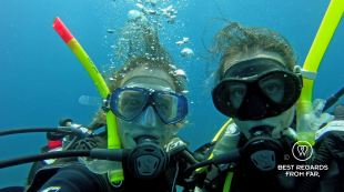 Best regards from underwater, Sodwana Bay, South Africa