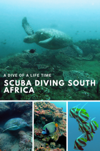 Pin showing underwater photos referring to SCUBA diving Sodwana Bay