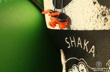 Surf ears, Shaka Surf School, Port Alfred, South Africa