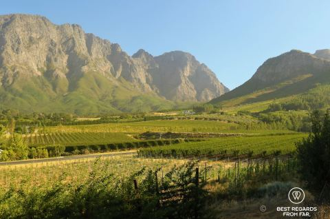 View on the vineyards and mountains of Franschhoek, amidst dramatic mountains at sunset