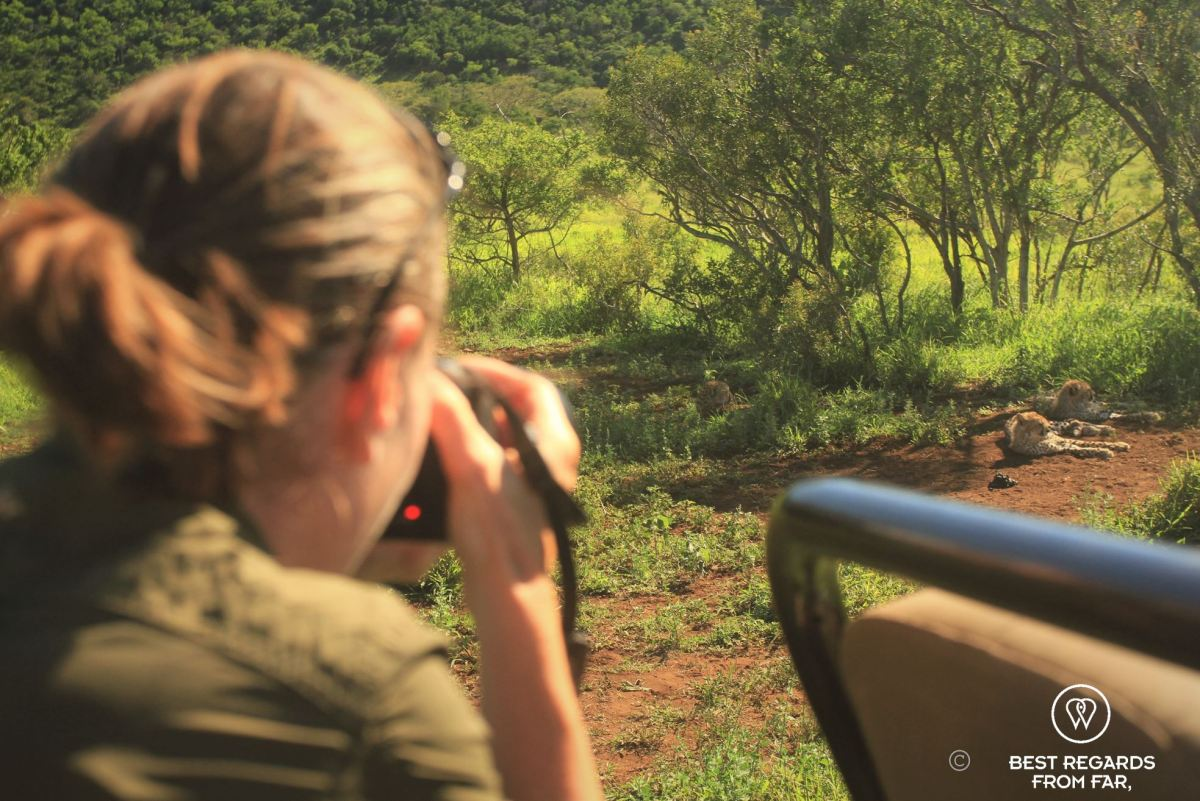 Writer and photographer Claire Lessiau photographing a cheetah family from a gane drive vehicle in Phinda Private Game Reserve, South Africa