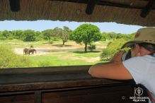 Photographer Marcella van Alphen photographing elephants from an observation deck, Tembe Elephant Park, South Africa.