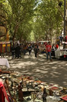 Lavapies street market, Madrid, Spain
