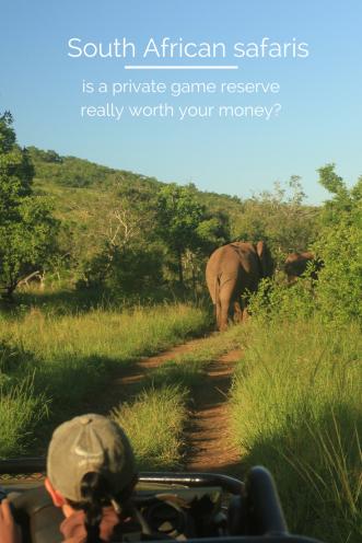 Safari South Africa - worth it