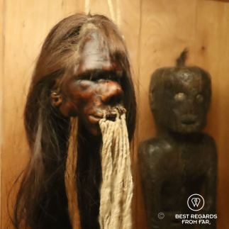 Shrunken head, Jibaro culture, Peru, Museo de las Americas, Madrid, Spain
