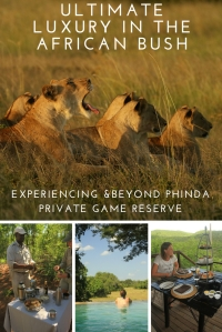 &Beyond Phinda Private game reserve - Pinterest - Pin 3 - South Africa