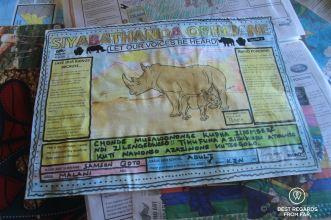 Rhino art by the Kingsley Holgate Foundation to educate local children to preserve rhinos