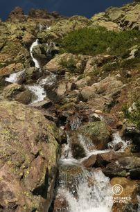 Plenty of water to drink on the downhill of stage 4, GR 20 Corsica, France