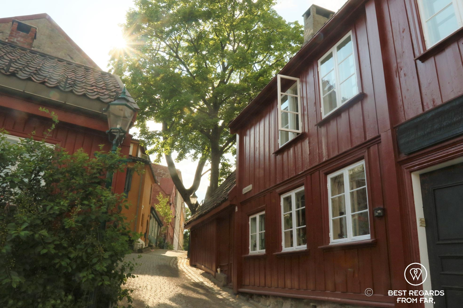 Red wooden house with white window frames along a cobble-stoned street, sun piercing through the leafs of a tree, Oslo, Norway.