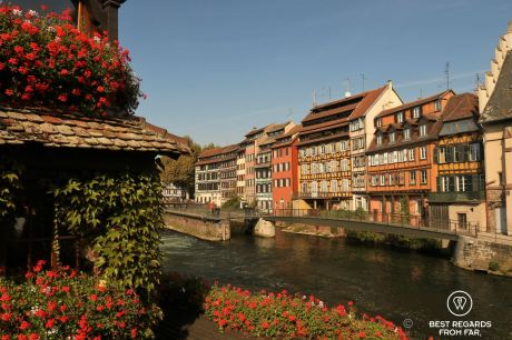 The picturesque houses of La Petite France in Strasbourg