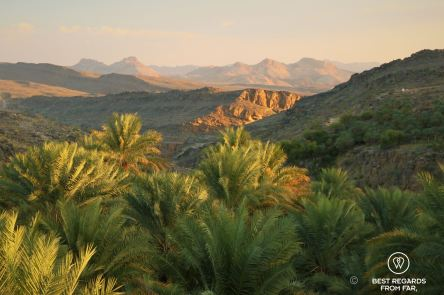 View from the rooftop terrace of the Old House at sunset, Misfat Al Abriyeen, Oman