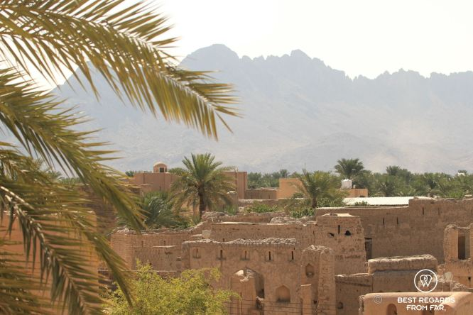 Old Nizwa from the Nizwa Fort, Oman