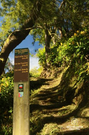 Hiking trail signpost to the Sentier Scout on the exclusive multiday hike through the 3 cirques, Réunion Island.