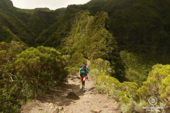 A hiker walking up the Sentier Scout in Mafate, a narrow trail along a mountain ridge on the exclusive multiday hike through the 3 cirques, Reunion Island.