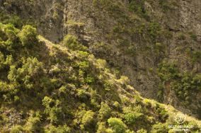 Aerial view on the trail to the remote Ilet des Orangers in Mafate on the exclusive multiday hike through the 3 cirques, Réunion Island.