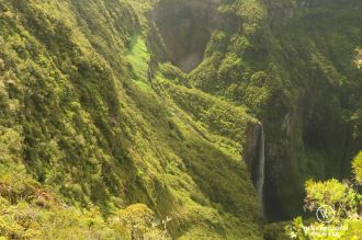 View on the Trou de Fer waterfall among the greenery as part of the exclusive multiday hike through the 3 cirques on Réunion Island