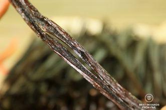 Vanilla of Réunion