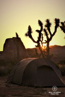 Sunset at camp in Joshua Tree National Park, USA