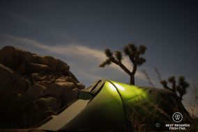 Camping under the stars in Joshua Tree National Park, USA