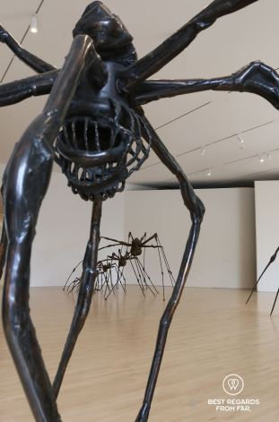 The spider by Louise Bourgeois, SFMOMA, San Francisco, California, USA