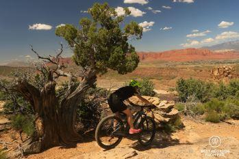 Going down Suicidal Tendencies, mountain biking, Santa Clara River Reserve, Saint George, Utah, USA