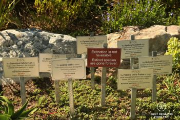 Extinction is not reversible, Kirstenbosch Botanical Garden, Cape Town, South Africa