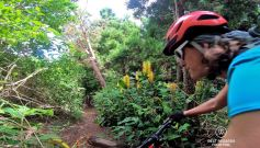Downhill mountain biking the Maïdo, Reunion Island