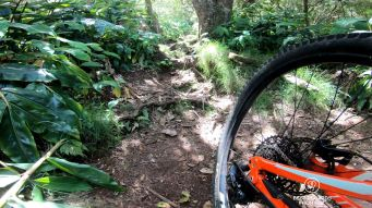 Mountain biking the Maïdo, Reunion Island