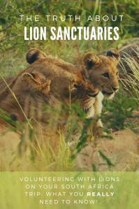 Lion Sanctuary - Pinterest - PIN South Africa