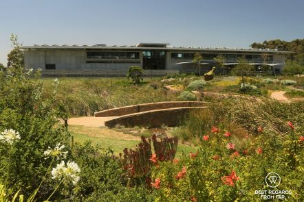 The Norval Foundation and its garden, Cape Town, South Africa