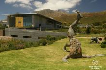 Hoderstebolder by Angus Taylor, The Norval Foundation, Cape Town, South Africa
