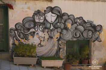 Black and white street art, flowr pots with bushes in Athens, Greece.